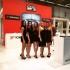 Autopromotec 2015, fiera di Bologna